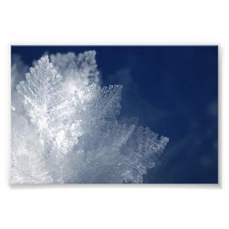Frost Art Photo