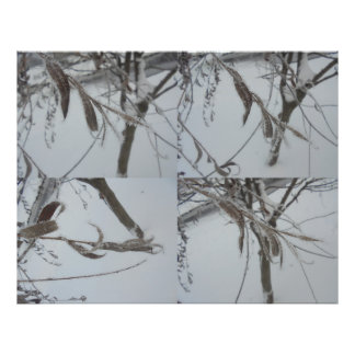 Frost Photo Print