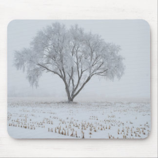 Frost Upon a Lonely Tree Mouse Pad