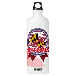 Frostburg, MD SIGG Traveller 1.0L Water Bottle