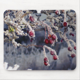 Frosted Berries mousemat