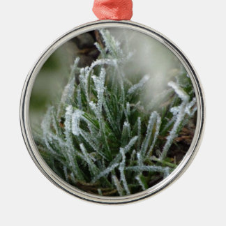 Frosted foliage Silver-Colored round decoration