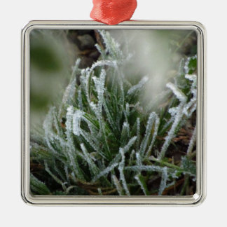 Frosted foliage Silver-Colored square decoration