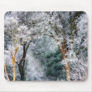 Frosted Forest HDR Mouse Pad