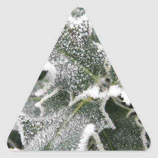 Frosted Holly Leaves Triangle Sticker