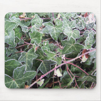 Frosted Ivy Mousepad