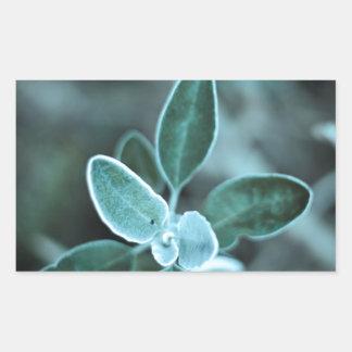 Frosted Leaf Rectangular Sticker