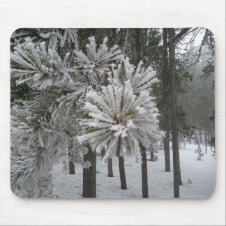 Frosted Pine/Foggy Day, Conifer CO Mouse Pad