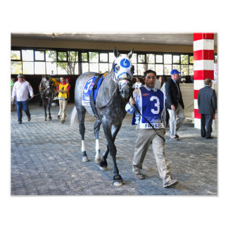 Frosted the Pennsylvania Derby Winner Photographic Print