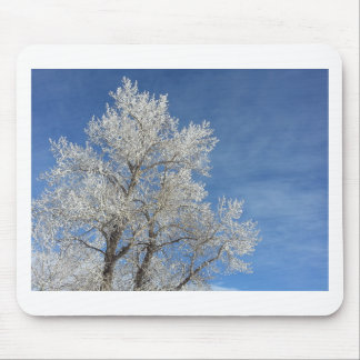 Frosted Trees 4 Mouse Pad