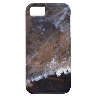 FROSTY AUTUMN iPhone 5 COVERS