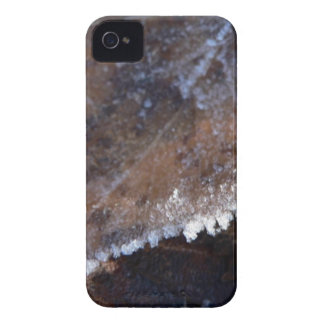 FROSTY AUTUMN iPhone 4 COVERS