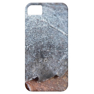 FROSTY AUTUMN LEAF iPhone 5 CASES