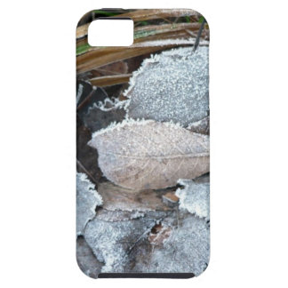 FROSTY AUTUMN LEAVES ON GROUND iPhone 5 CASE