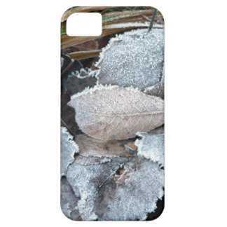 FROSTY AUTUMN LEAVES ON GROUND CASE FOR THE iPhone 5