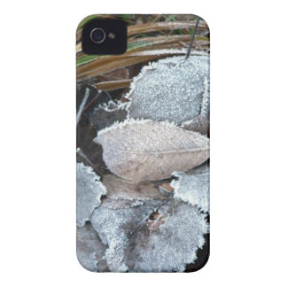 FROSTY AUTUMN LEAVES ON GROUND iPhone 4 CASE