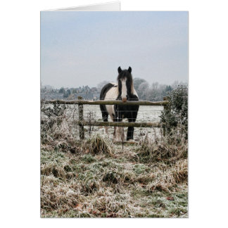 Frosty Field Greeting Card