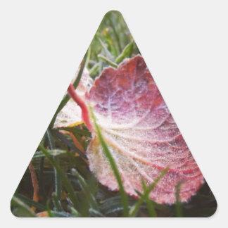 Frosty leaf triangle sticker