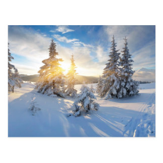 Frosty Morning In The Mountains Postcard