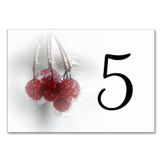 Frosty Red Berries Table Numbers