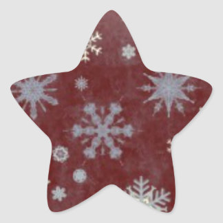 Frosty Snowflake Star Sticker