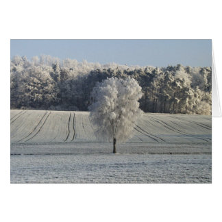 Frosty Winter Morning-Rothenburg Germany Greeting Card