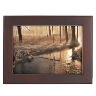 Frosty Yellowstone Morning Keepsake Box