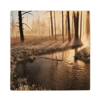 Frosty Yellowstone Morning Wood Coaster