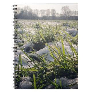 Frozen 1 notebook