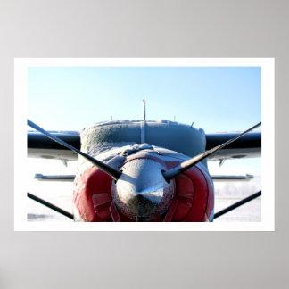 Frozen Airplane Poster