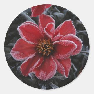 Frozen Dahlia 64 ~ sticker