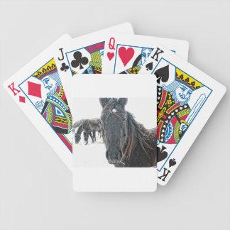 Frozen Deck Of Cards