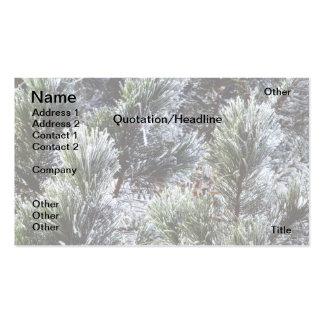 Frozen evergreen business card templates
