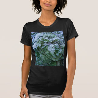 Frozen Fern on a Tree Stump Fitted Black Teeshirt T-Shirt