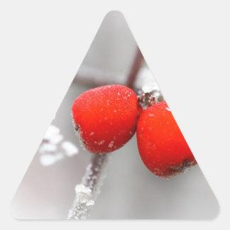 Frozen Fruit Triangle Sticker