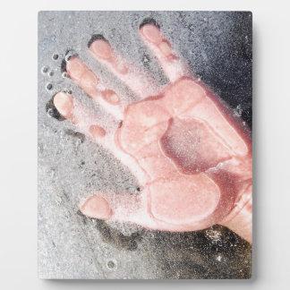 Frozen hand design plaque
