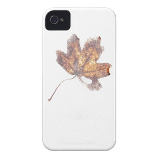 Frozen leaf Case-Mate iPhone 4 case