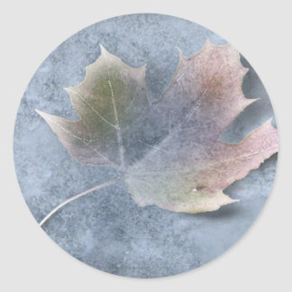 Frozen Leaf on Ice Round Sticker