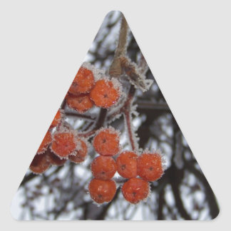 Frozen Orange Berries Triangle Sticker