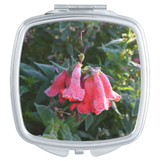 Frozen Petals, compact mirror