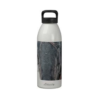 Frozen Reusable Water Bottles