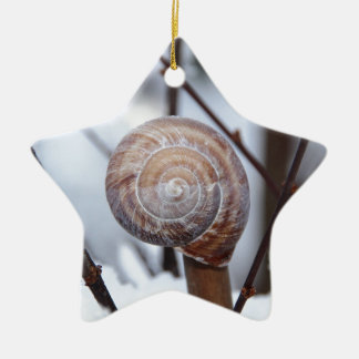 Frozen Snail Shell in Snow Ceramic Star Decoration