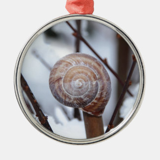 Frozen Snail Shell in Snow Silver-Colored Round Decoration