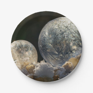 Frozen Soap Bubbles Ice Crystals Winter - Party Paper Plate