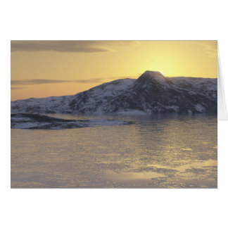 frozen strait greeting cards