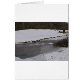 Frozen stream in New Forest Card
