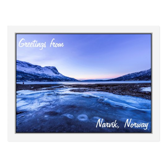 Frozen Stream on the Narvik Shores Postcard