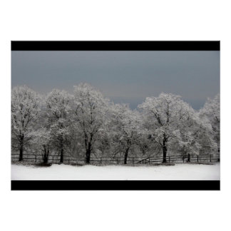 Frozen Tree Branches Christmas Contemporary Modern Poster