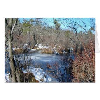 Frozen Wetlands Pond Greeting Card