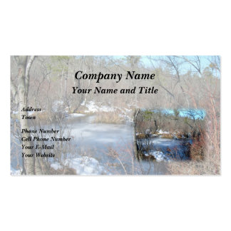 Frozen Wetlands Pond Pack Of Standard Business Cards